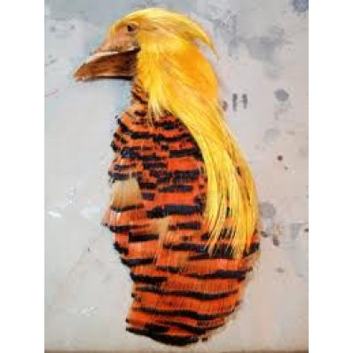 Golden Pheasant HEAD CAPE