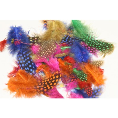 guinea fowl jubliee mix