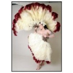 Burlesque triple feather fan 26-28inch plumes