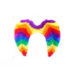 Feather wings rainbow pride color