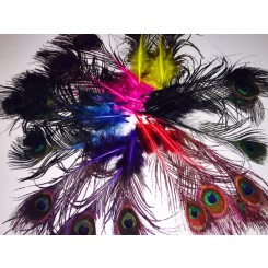 mini dyed peacock feathers