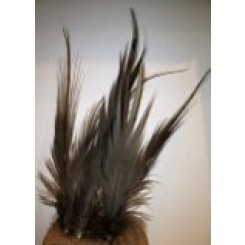 10x natural heron feathers