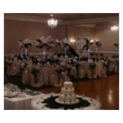 Ostrich Feather Centerpiece same as we hire for £25