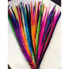 5 rainbow mix 20-22inch dyed pheasant feather