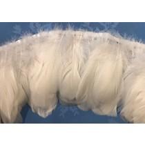 swan white fringe